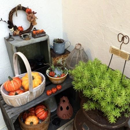 ハロウィン雑貨を飾った画像