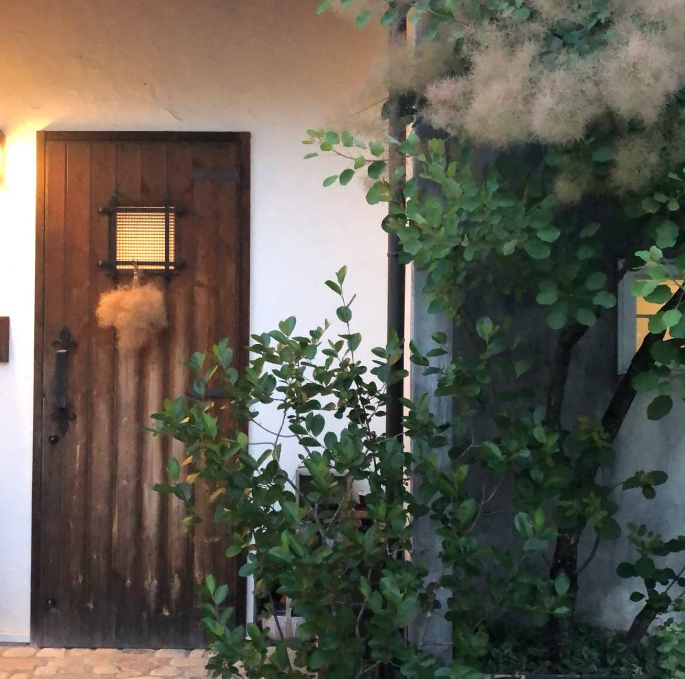 玄関ドアにスモークツリーの画像